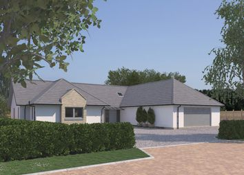 Thumbnail 4 bedroom detached bungalow for sale in The Morton, Plot 33, Forgan Drive, Drumoig, St. Andrews