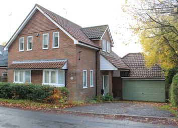 Thumbnail 4 bed detached house to rent in Old London Road, Stockbridge, Hampshire