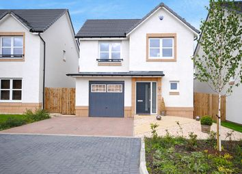 Thumbnail 3 bed detached house for sale in Archerfield Crescent, Newarthill, Motherwell