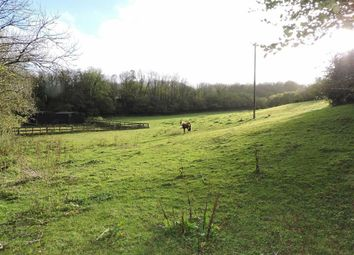Thumbnail Land for sale in Pantllyn, Llandybie, Ammanford