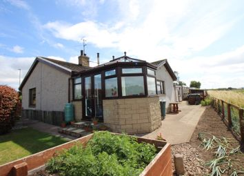 Thumbnail 3 bedroom bungalow for sale in Main Road, Milfield, Wooler