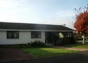 Thumbnail 3 bed bungalow to rent in Millands Road, Thankerton, Biggar