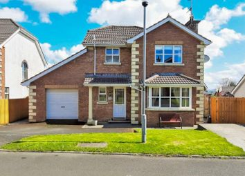 Thumbnail 3 bed detached house for sale in 44 Braefield, Claudy, Londonderry
