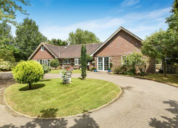 Thumbnail 5 bed detached bungalow for sale in Wangfield Lane, Curdridge, Hampshire