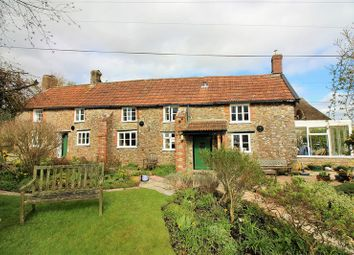Thumbnail 4 bed detached house for sale in Chilson Common, South Chard, Chard