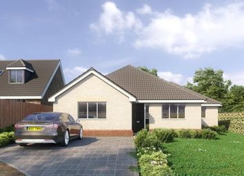 Thumbnail 3 bedroom bungalow to rent in Church Hill, Ramsey, Harwich