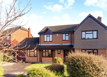 Thumbnail 5 bed detached house to rent in Molyneux Road, Windlesham, Surrey