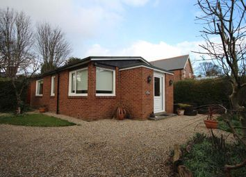 Thumbnail 2 bed detached bungalow to rent in West Park Road, Cleadon Village, Cleadon