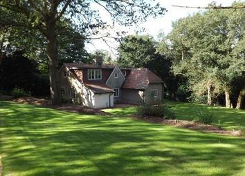 Thumbnail 3 bed detached house to rent in Wispers Lane, Haslemere