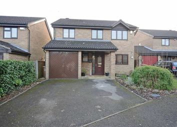 Thumbnail 4 bed detached house for sale in Humber Gardens, Wellingborough
