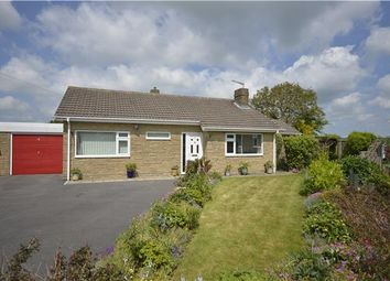 Thumbnail 3 bed detached bungalow to rent in Brockley Acres, Eastcombe, Stroud, Gloucestershire