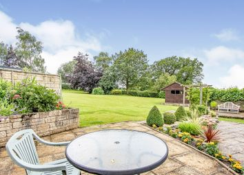 Thumbnail 3 bed bungalow for sale in Bittles Green, Motcombe, Shaftesbury