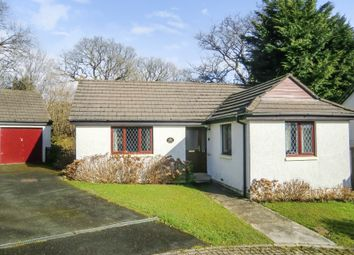 Thumbnail 2 bed detached bungalow for sale in Stanbury Close, St. Giles-On-The-Heath, Launceston