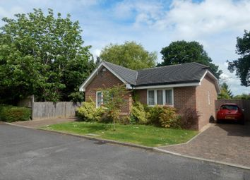 Thumbnail 2 bed bungalow to rent in Ridgeway Close, Cranleigh