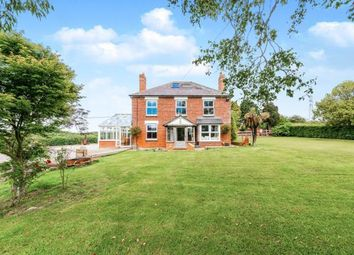 Thumbnail 4 bed equestrian property for sale in Hammer Lane, Vines Cross, Heathfield, East Sussex