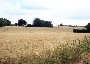 Thumbnail Land for sale in Bethel Row, Throwley, Faversham
