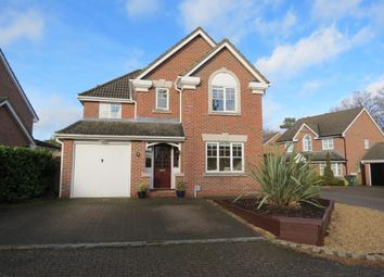 Thumbnail 4 bed detached house to rent in Ramsay Close, Camberley