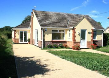 Thumbnail 4 bed detached bungalow for sale in Clacton Road, Stones Green, Harwich