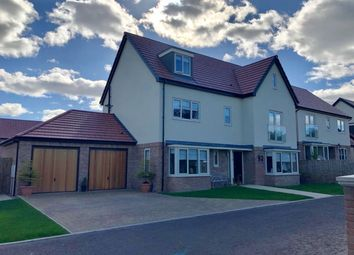 Thumbnail 5 bed detached house to rent in Morwick Road, Warkworth, Northumberland