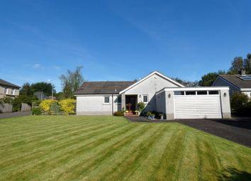 Thumbnail 4 bed detached bungalow for sale in Nunholm Place, Dumfries, Dumfries And Galloway