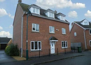 Thumbnail 5 bedroom detached house to rent in Reedland Way, Hampton Vale, Peterborough