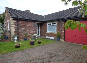 Thumbnail 3 bed detached bungalow for sale in Townfoot Park, Brampton, Cumbria