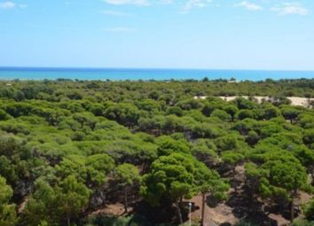 Thumbnail 2 bed apartment for sale in Guardamar Del Segura, Alicante, Valencia, Spain