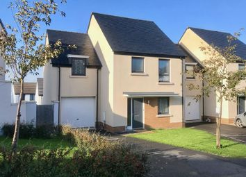 Thumbnail 4 bed detached house for sale in Stock Park, Okehampton