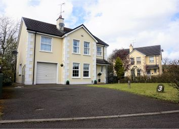 Thumbnail 4 bed detached house for sale in Millers Close, Claudy