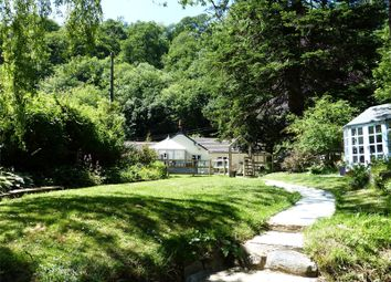 Thumbnail 4 bed bungalow for sale in Sequoia Waters, Llawhaden, Narberth, Pembrokeshire