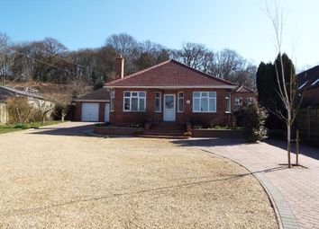 Thumbnail Property for sale in Dersingham, Kings Lynn, Norfolk