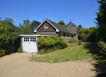 Thumbnail 3 bed detached bungalow to rent in Church Road, Rotherfield, Crowborough