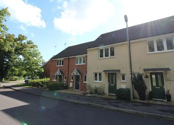 Thumbnail 2 bed terraced house to rent in Skippetts Gardens, Basingstoke