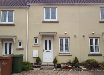 Thumbnail 2 bedroom terraced house to rent in Barlow Gardens, Plymouth
