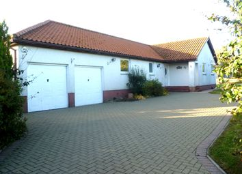Thumbnail 3 bed detached bungalow for sale in Horncliffe, Berwick Upon Tweed