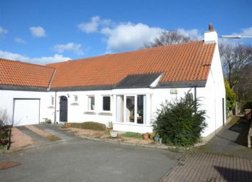 Thumbnail 3 bed semi-detached house for sale in Kildinny Yards, Kingsbarns, St. Andrews