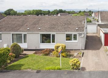 Thumbnail 3 bed semi-detached bungalow for sale in Pine Way, Oakbank, Perth