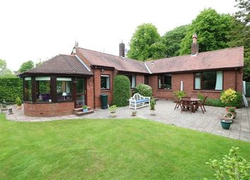Thumbnail 4 bedroom bungalow for sale in Plains Road, Wetheral, Carlisle, Cumbria