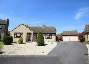 Thumbnail 3 bed detached bungalow for sale in Powell Rise, Malmesbury, Wiltshire
