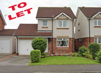 Thumbnail 3 bed detached house to rent in Hunter Avenue, Heathhall, Dumfries