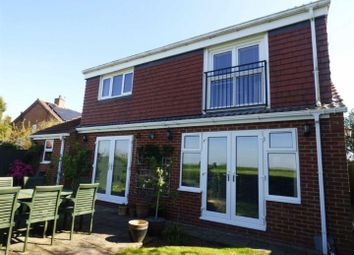 Thumbnail 4 bed detached house for sale in Chapel Garth, Broomfleet, Brough