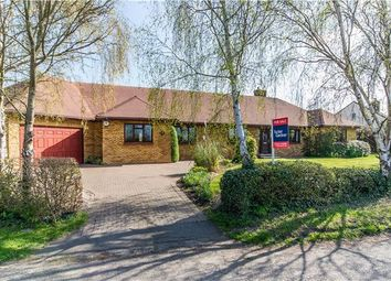 Thumbnail 5 bed detached bungalow for sale in Duck End, Girton, Cambridge