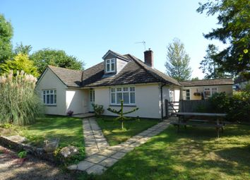 Thumbnail 4 bed detached bungalow for sale in Chetnole, Sherborne, Dorset