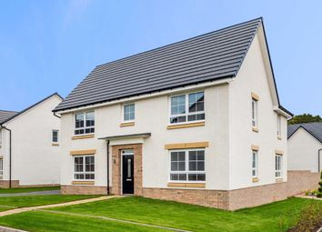 """Thumbnail 4 bed detached house for sale in """"Brechin"""" at Frogston Road East, Edinburgh"""