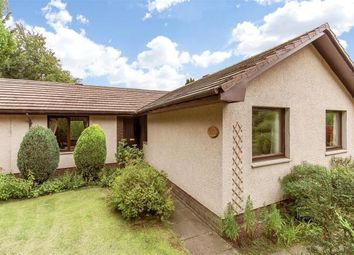 Thumbnail 4 bed detached bungalow for sale in The Orchard, Woodside, Blairgowrie