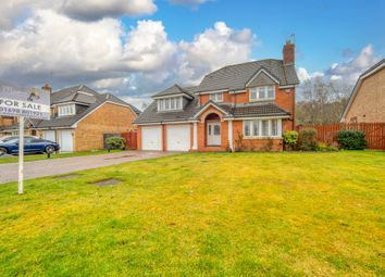 Thumbnail 4 bed detached house for sale in Smithycroft, Hamilton