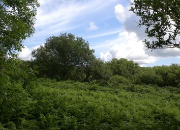 Thumbnail Property for sale in Strenaby, Abbeylands, Onchan