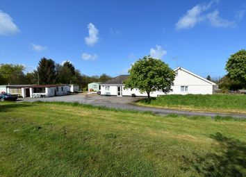 Thumbnail 6 bed bungalow for sale in Oakford, Llanarth