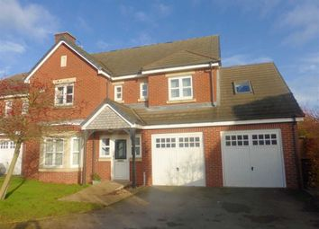 Thumbnail 4 bed detached house to rent in Shackleton Drive, Burbage, Hinckley