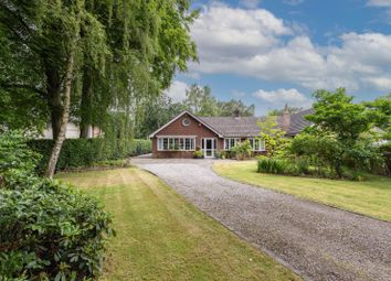 Thumbnail Detached bungalow for sale in Northwich Road, Cranage, Knutsford